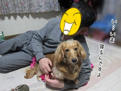 kinako4405.jpg
