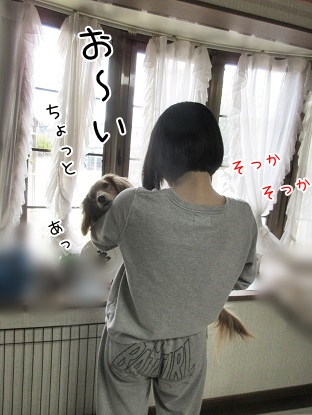 kinako4439.jpg