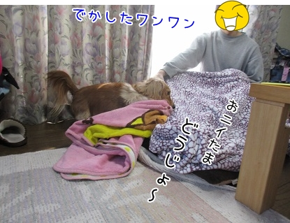 kinako4444.jpg