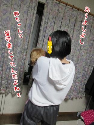 kinako4472.jpg