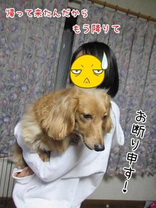 kinako4473.jpg