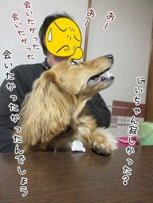 kinako4489.jpg
