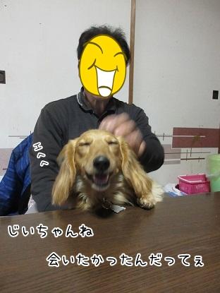 kinako4490.jpg
