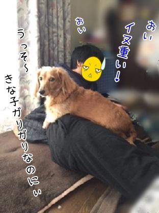 kinako4507.jpg