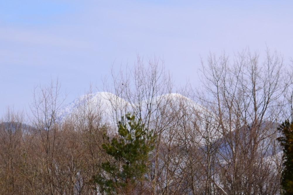 _雪を被った山DSC_0340