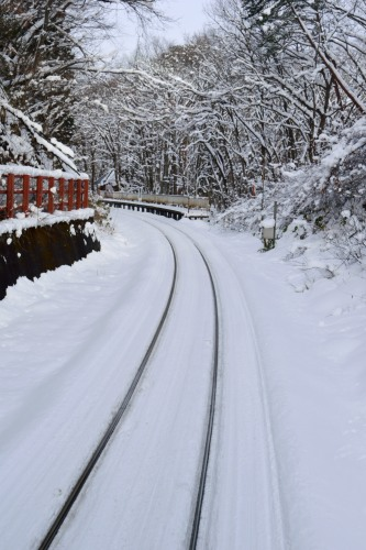 _列車soukouDSC_0348