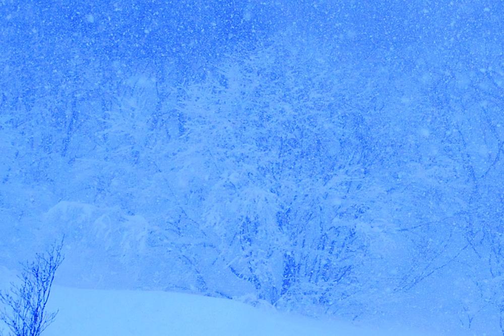 _噴気口樹氷DSC_0505