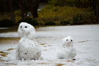 _雪だるまDSC_1330