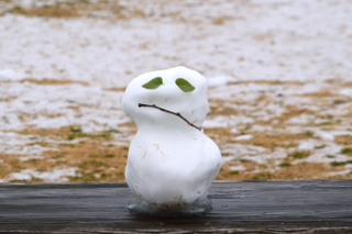 _雪だるまDSC_1324