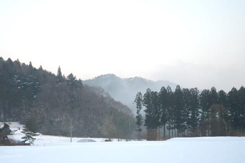 _華川町花園DSC_1428