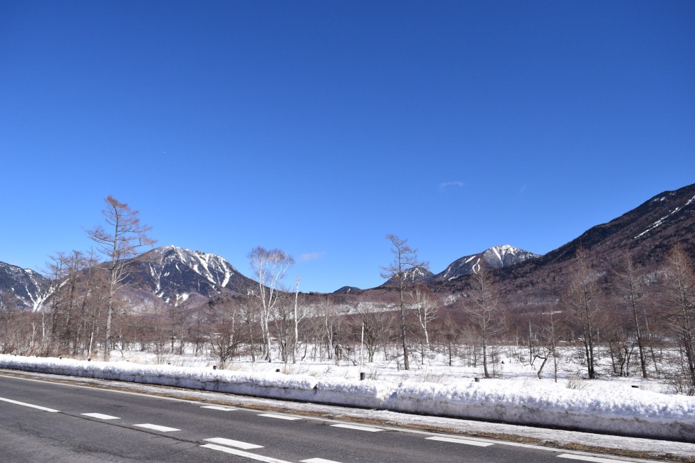 _龍頭の滝から戦場ヶ原DSC_2203