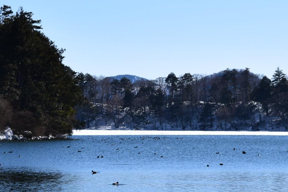 _湯ノ湖DSC_2356