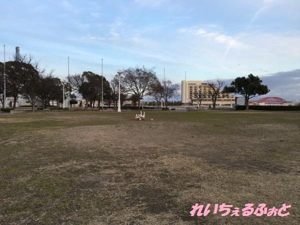 DPP_9985.jpg