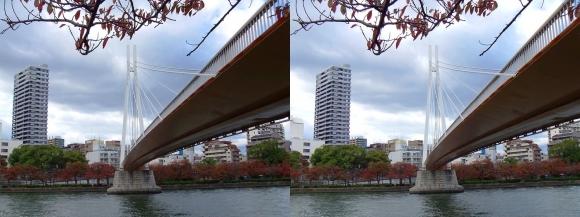 毛馬桜之宮公園からの川崎橋②(平行法)