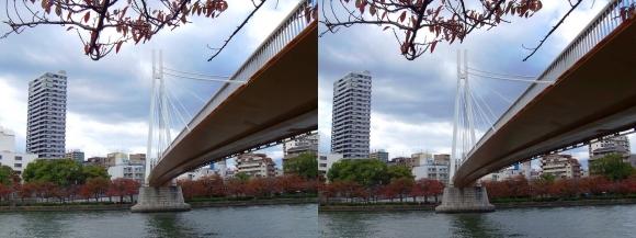 毛馬桜之宮公園からの川崎橋②(交差法)