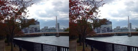 毛馬桜之宮公園からの川崎橋①(平行法)