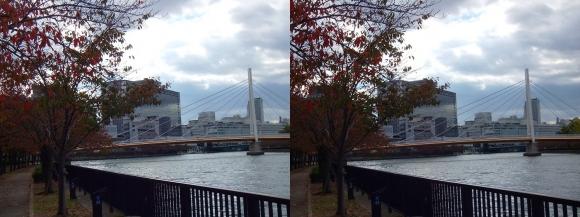 毛馬桜之宮公園からの川崎橋①(交差法)