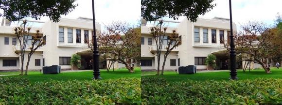 大阪市公館「ザ・ガーデンオリエンタル大阪」①(交差法)