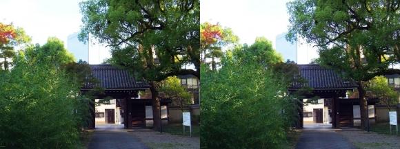藤田邸跡公園⑨(平行法)