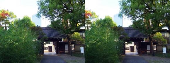 藤田邸跡公園⑨(交差法)