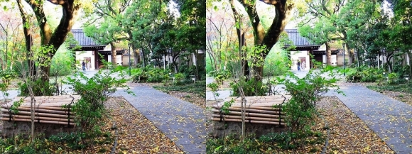 藤田邸跡公園⑧(平行法)