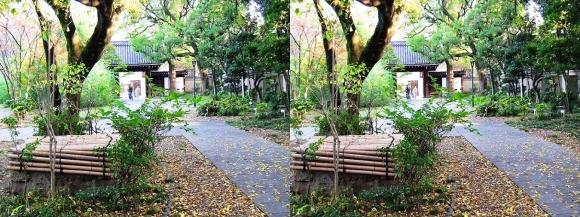 藤田邸跡公園⑧(交差法)