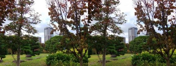 藤田邸跡公園⑥(交差法)