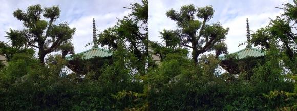 藤田邸跡公園⑤(平行法)