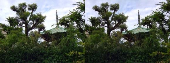 藤田邸跡公園⑤(交差法)