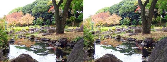 藤田邸跡公園③(平行法)
