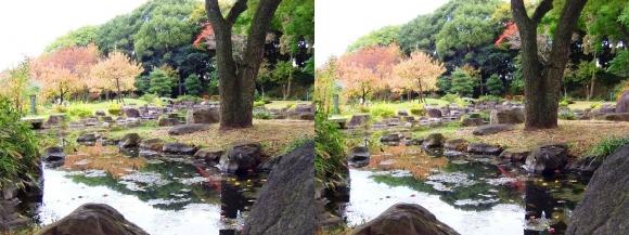 藤田邸跡公園③(交差法)