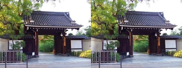 藤田邸跡公園①(平行法)