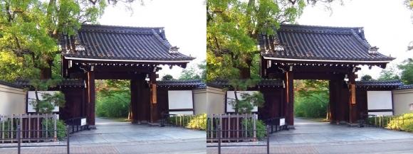 藤田邸跡公園①(交差法)