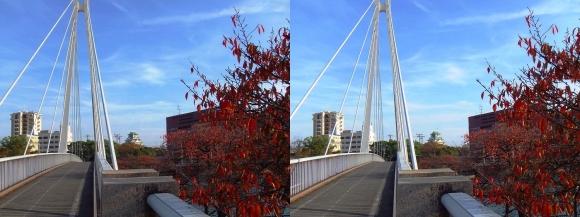 川崎橋②(平行法)