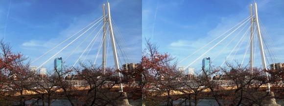 川崎橋①(平行法)