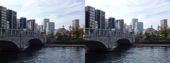 中之島公園 ばらぞの橋②(平行法)