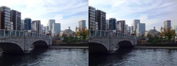 中之島公園 ばらぞの橋②(交差法)