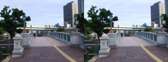 中之島公園 ばらぞの橋①(平行法)