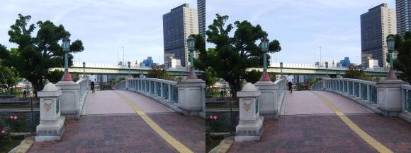 中之島公園 ばらぞの橋①(交差法)