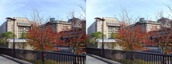 堂島川沿い遊歩道 日本銀行大阪支店・大阪市役所(平行法)