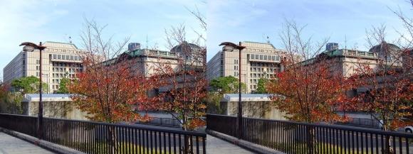 堂島川沿い遊歩道 日本銀行大阪支店・大阪市役所(交差法)