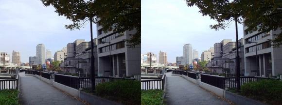 堂島川沿い遊歩道からの眺望③(平行法)