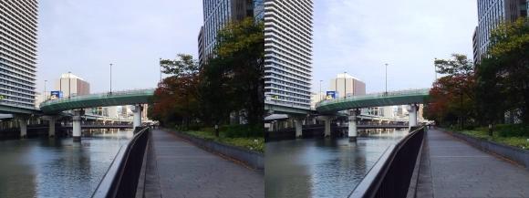 堂島川沿い遊歩道からの眺望②(平行法)