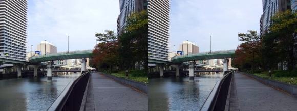 堂島川沿い遊歩道からの眺望②(交差法)