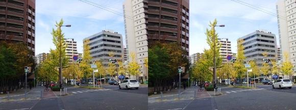 なにわ筋 京町堀(平行法)