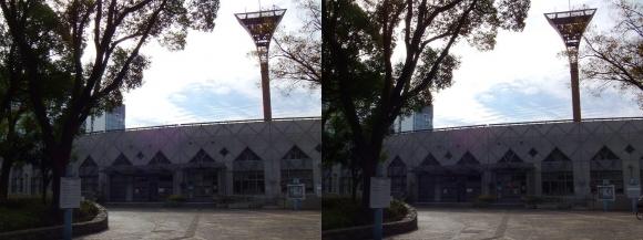 靭テニスセンター(交差法)
