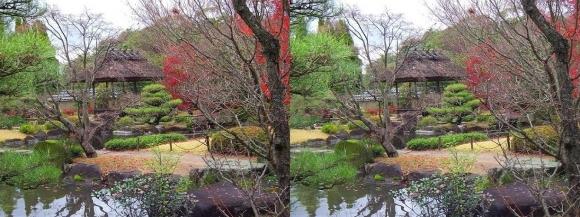 姫路城西屋敷公園 好古園 築山池泉の庭~竹の庭③(平行法)