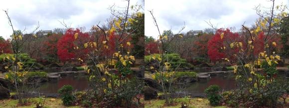 姫路城西屋敷公園 好古園 築山池泉の庭~竹の庭②(平行法)