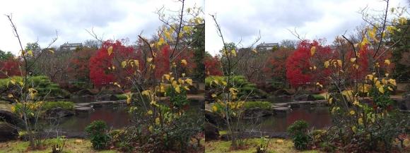 姫路城西屋敷公園 好古園 築山池泉の庭~竹の庭②(交差法)