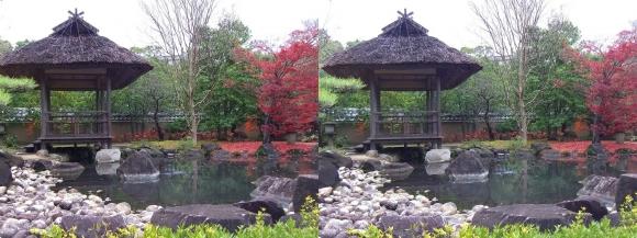 姫路城西屋敷公園 好古園 築山池泉の庭~竹の庭①(平行法)